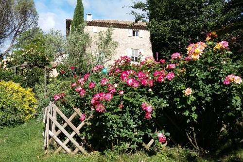 Bastide de Boisset - b&b Provence