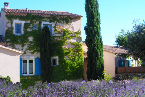 Bed and Breakfast Luberon Le clos des lavandes