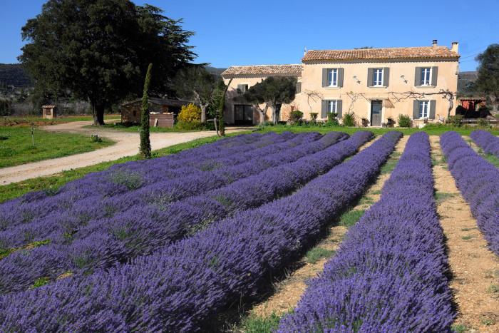chambres d'hotes de charme - Domaine Saint Jacques & spa - Luberon