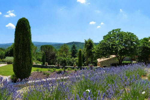 Bed and Breakfast Luberon La Canove